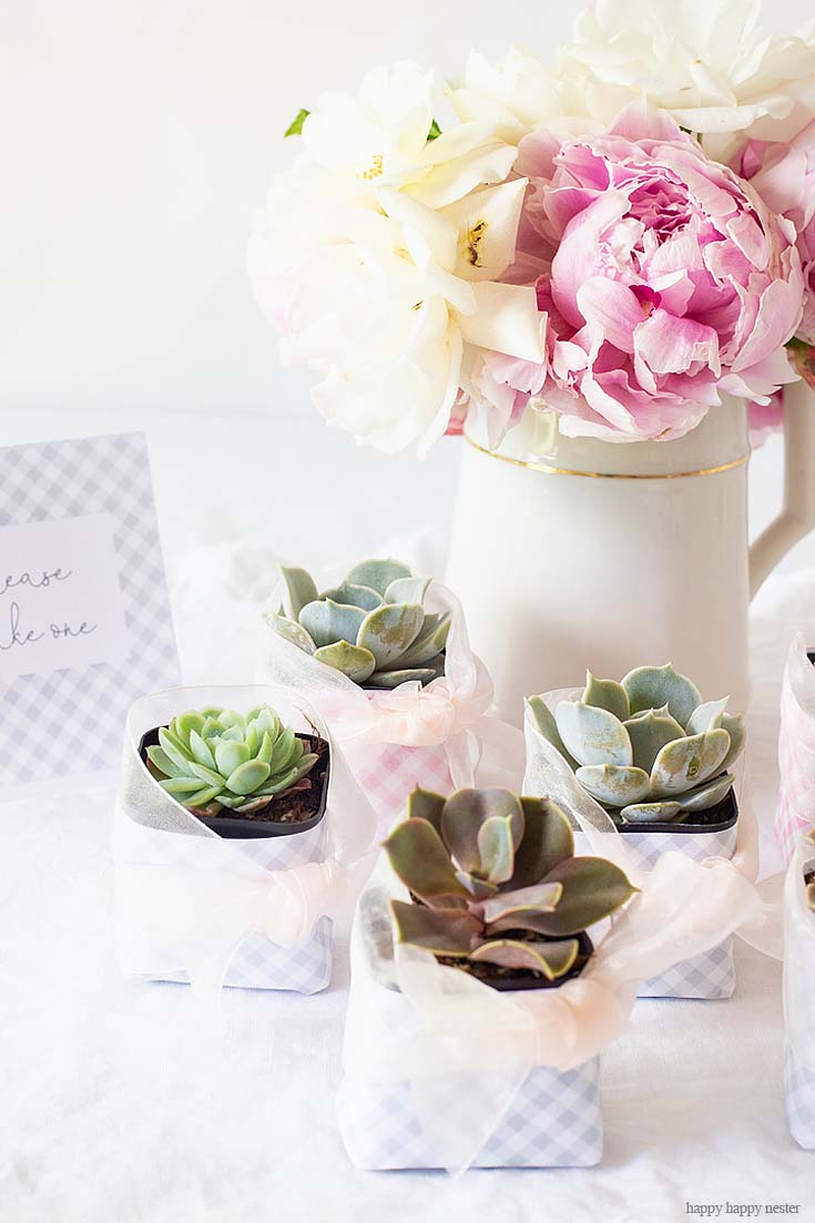 This cute DIY Succulent Wedding Favors project is so adorable and easy peasy. They make great wedding or a hostess gift this is the perfect paper project for you. #wedding #weddingfavors #crafts #papercrafts #scrapbooking #weddingreceptions #succulents
