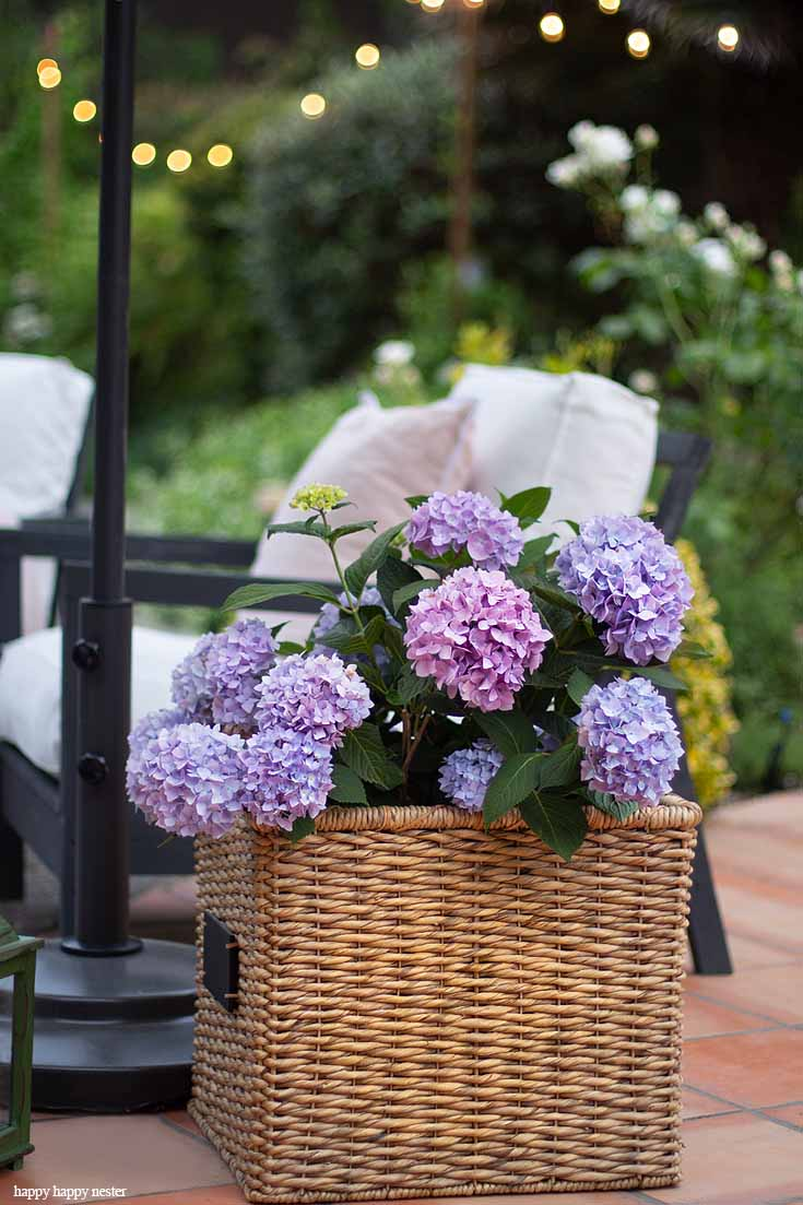 Enjoy summer flowers in pots and baskets this summer and Learn How to Create a Cozy Outdoor Living Space in 9 easy tips. This DIY to summer decorating is essential. #summerdecor #outdoorlivingspaces #entertaining