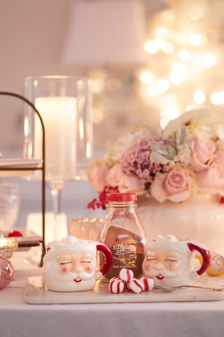Do you need some Holiday Home decor ideas? This pretty Christmas night tour is packed with ideas for your Christmas dining room to outdoor entertaining. Also, find out how to create the cutest mason jar hot cocoa gift and tags! #christmasdecor #decoratingfortheholidays #holidaydecor