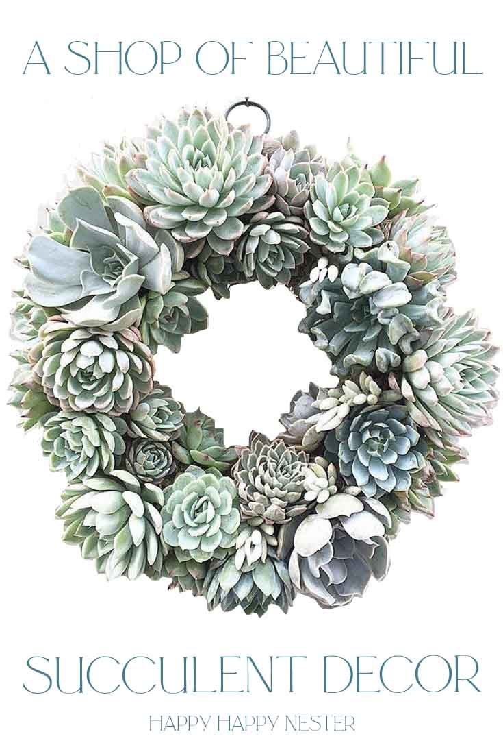 great shop for succulent decor pin