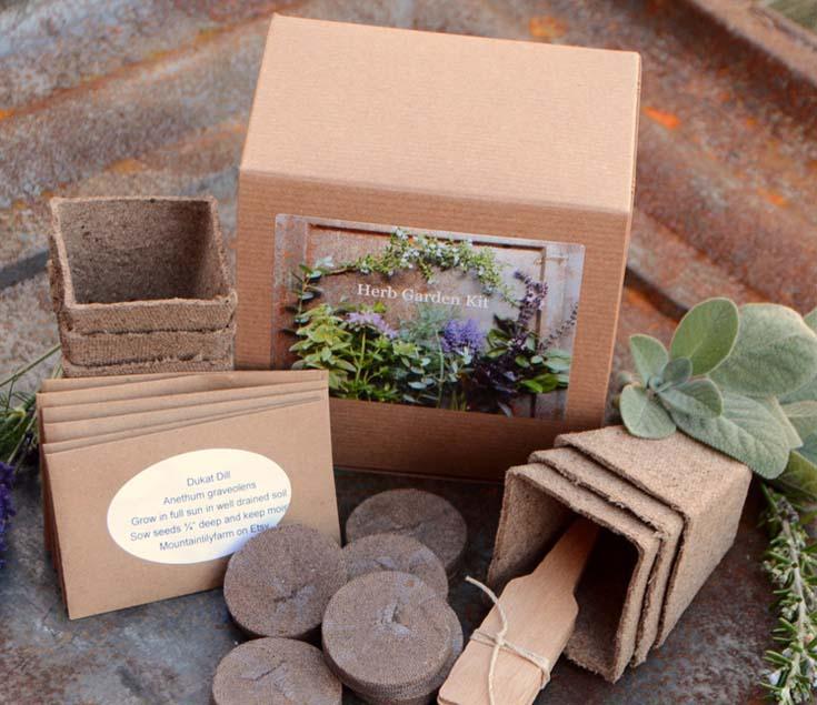 grow your own garden herbs.
