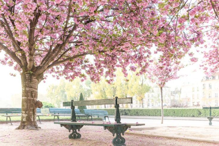 stunning photos of Paris France