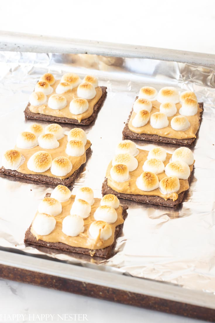 s'mores ice cream sandwich recipe with graham crackers and mini marshmallows roasted in a toaster oven