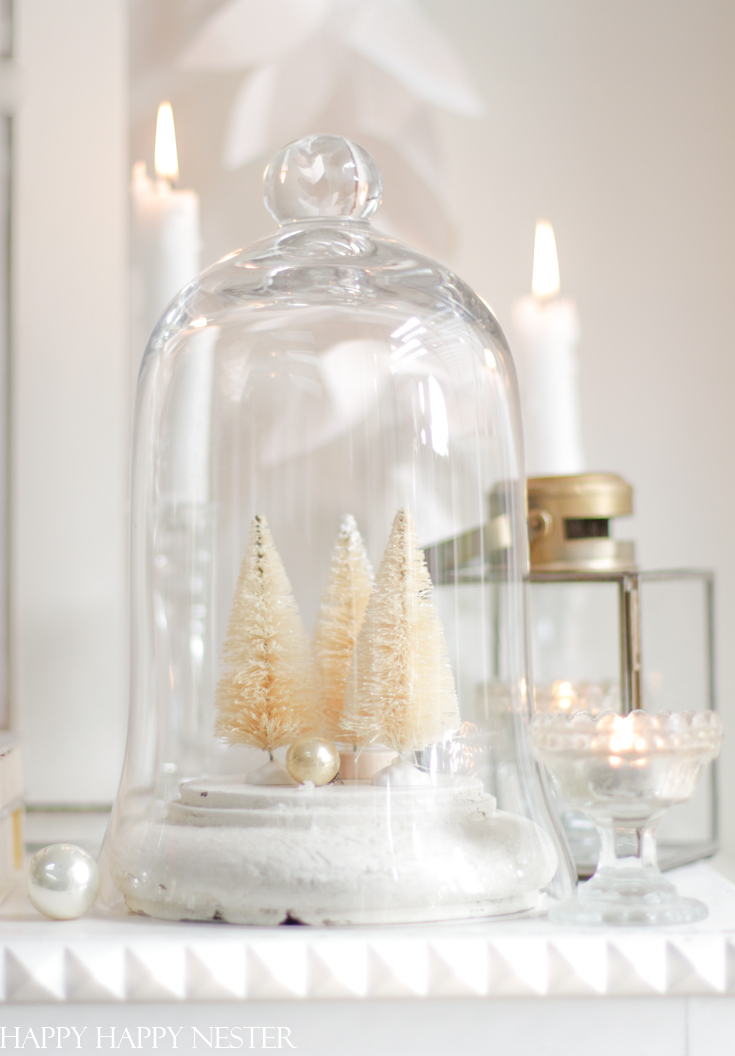 glass cloche for decorating