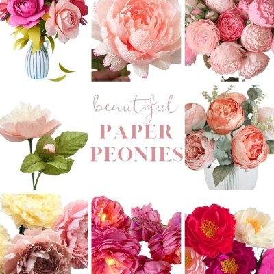 Pretty Paper Peonies for Sale