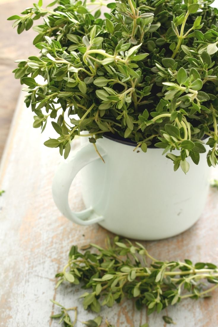 fresh herbs for roasting a chicken