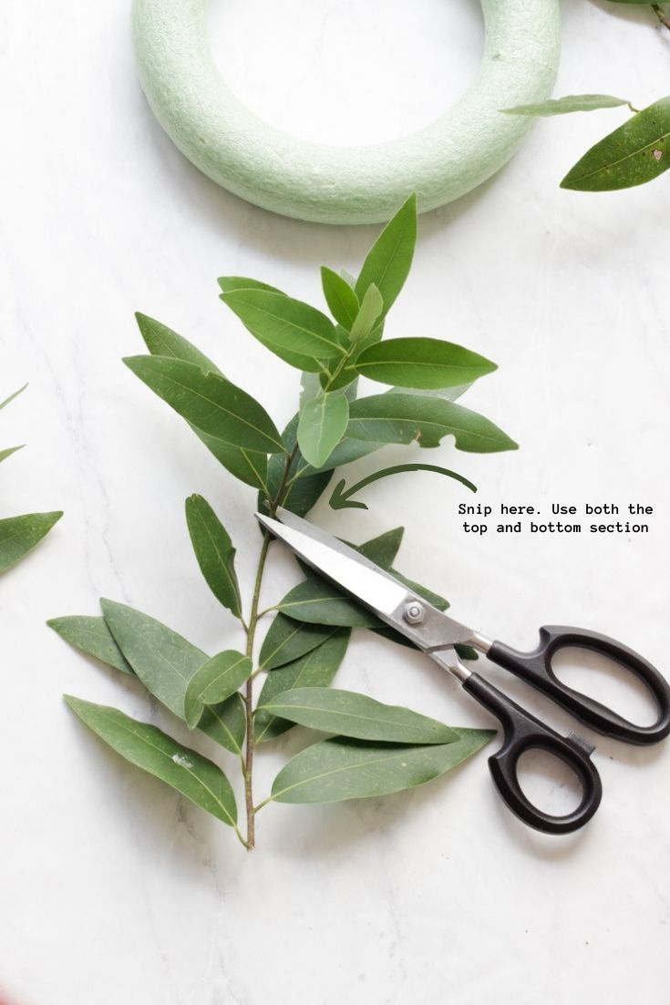 how to make a bay leaf wreath