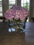 How to Bring Wilting Hydrangeas Back to Life