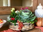 Fall Cabbage Centerpiece - Step by Step Tutorial