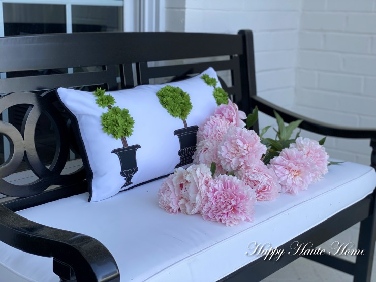 Porch cushions-11
