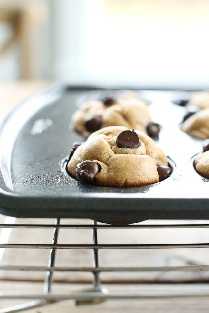 Blender Muffins flourless cooling