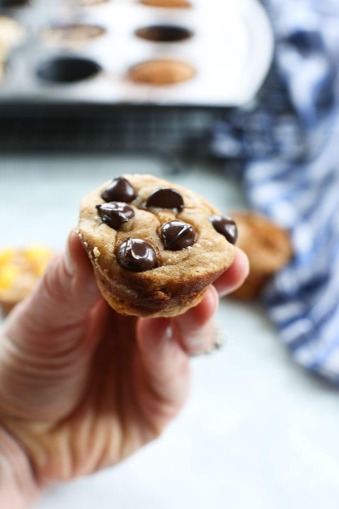 Blender Muffins recipe flourless