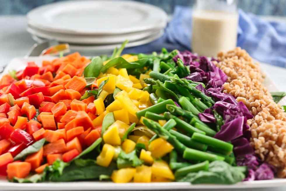 Rainbow Farro Salad recipe close up photo