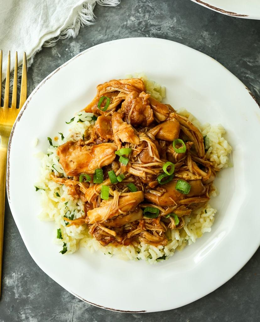 Honey Garlic Chicken Instant Pot Pressure Cooker or Slow cooker Recipe overhead shot