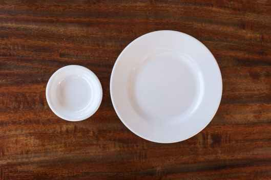 Small Plate to Help Lose Weight