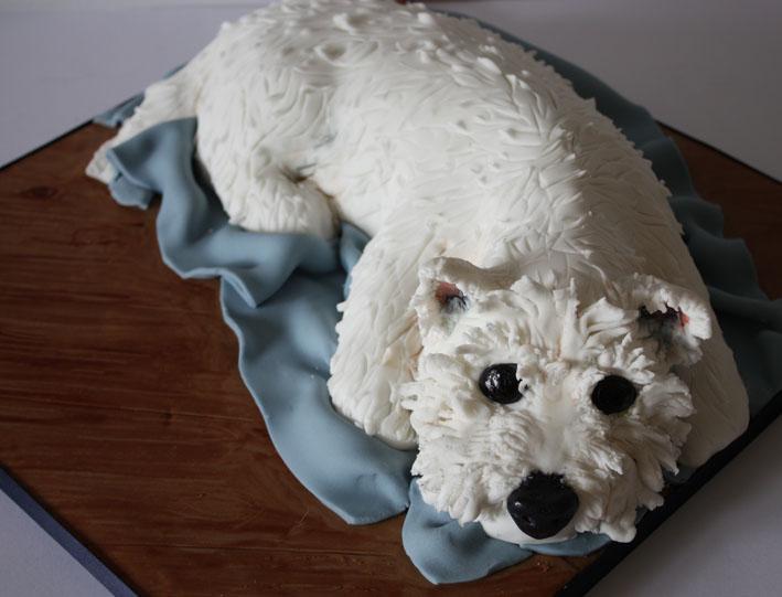 Sculpted Animal Cakes Happyhills Cakes Creative