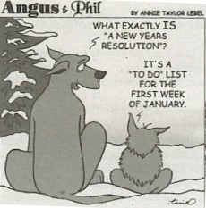 My New Year's Resolutions for 2011
