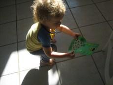 Magic Leprechaun Finder