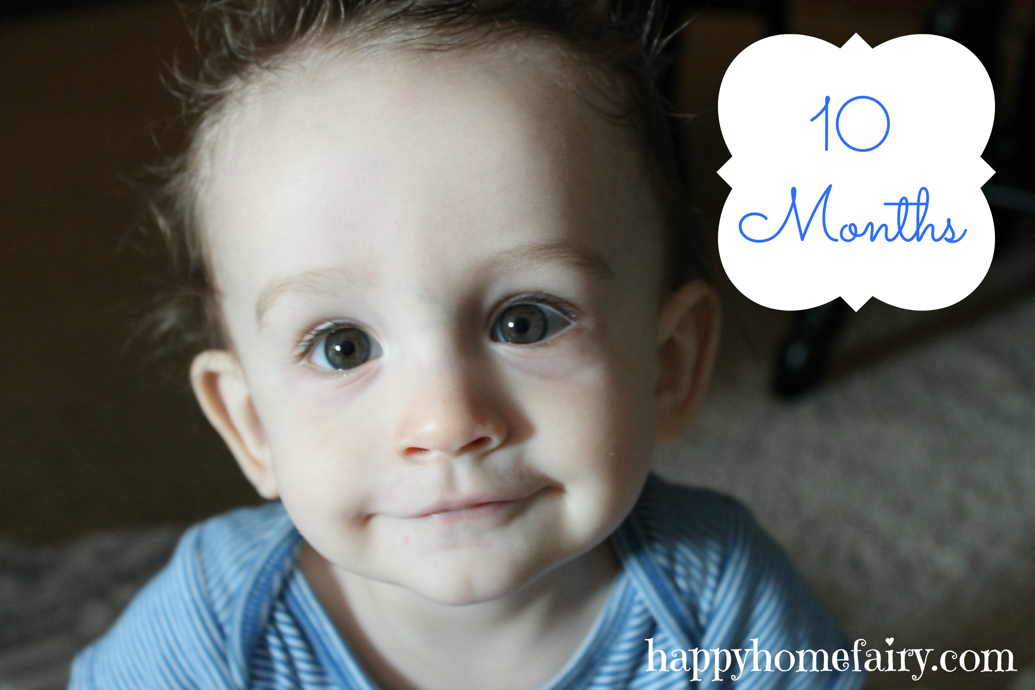 10 months what i learned from dropping my baby happy home fairy about 3 weeks ago i was changing the happy babys diaper on his changing table fandeluxe Document