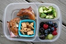 10 Easy Lunch Box Ideas