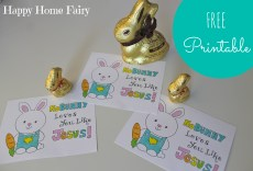 NoBUNNY Loves You Like Jesus – FREE Printable!