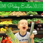 extreme picky eater solutions