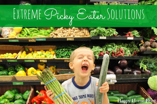 extreme picky eater solutions - such great advice! i SO need this for my picky eater!