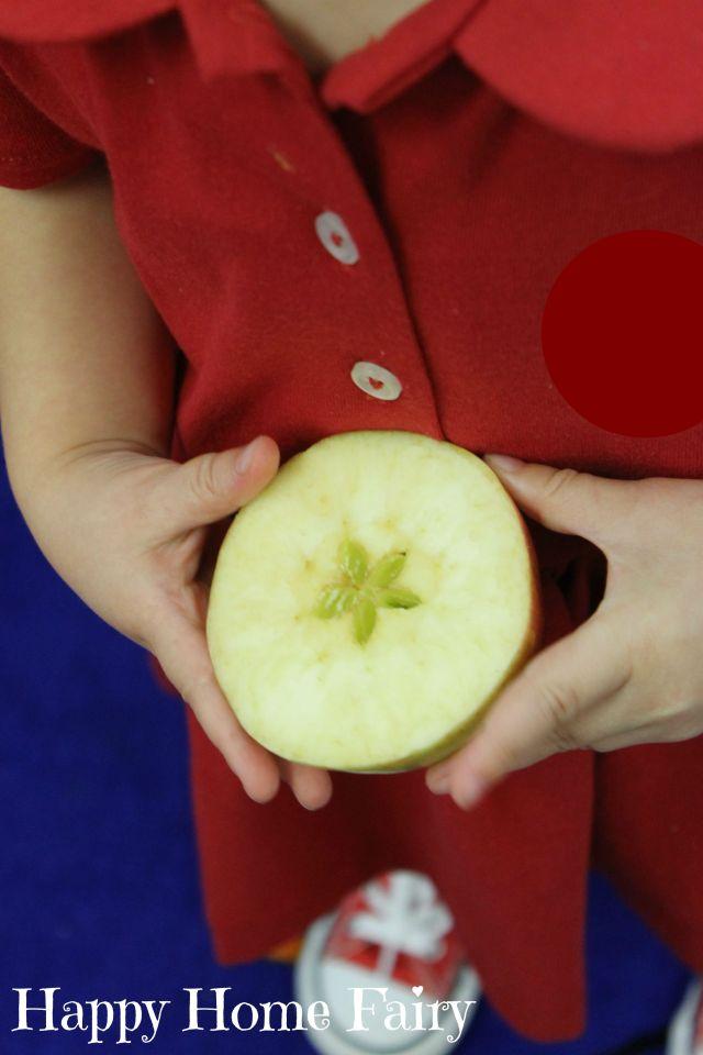 apple star story 9