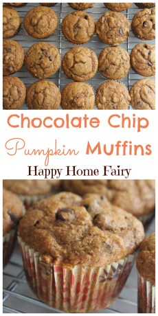 Recipe – Chocolate Chip Pumpkin Muffins