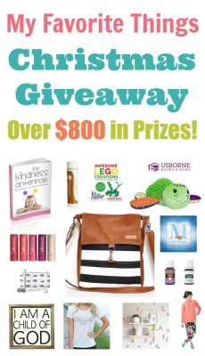 HUGE Favorite Things Christmas Giveaway – $800 VALUE!