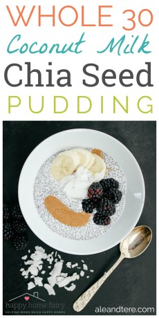 Recipe – Coconut Milk Chia Seed Pudding