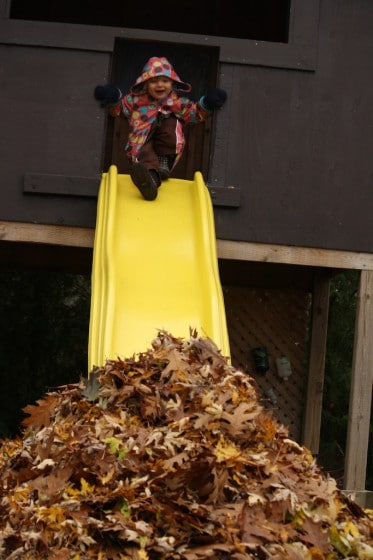 kids sliding into pile of fall leaves