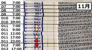 ワンステップ排卵検査薬クリアを使った結果 11月分