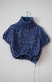 blue-and-furry-front-1