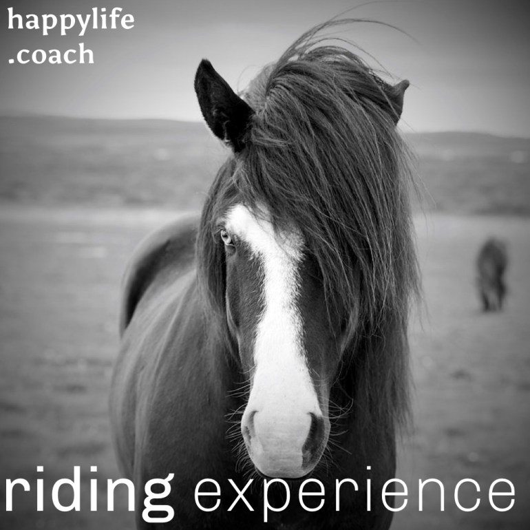 experience.001