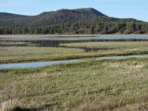 Grass Lake (Grass Lake Rest Stop)