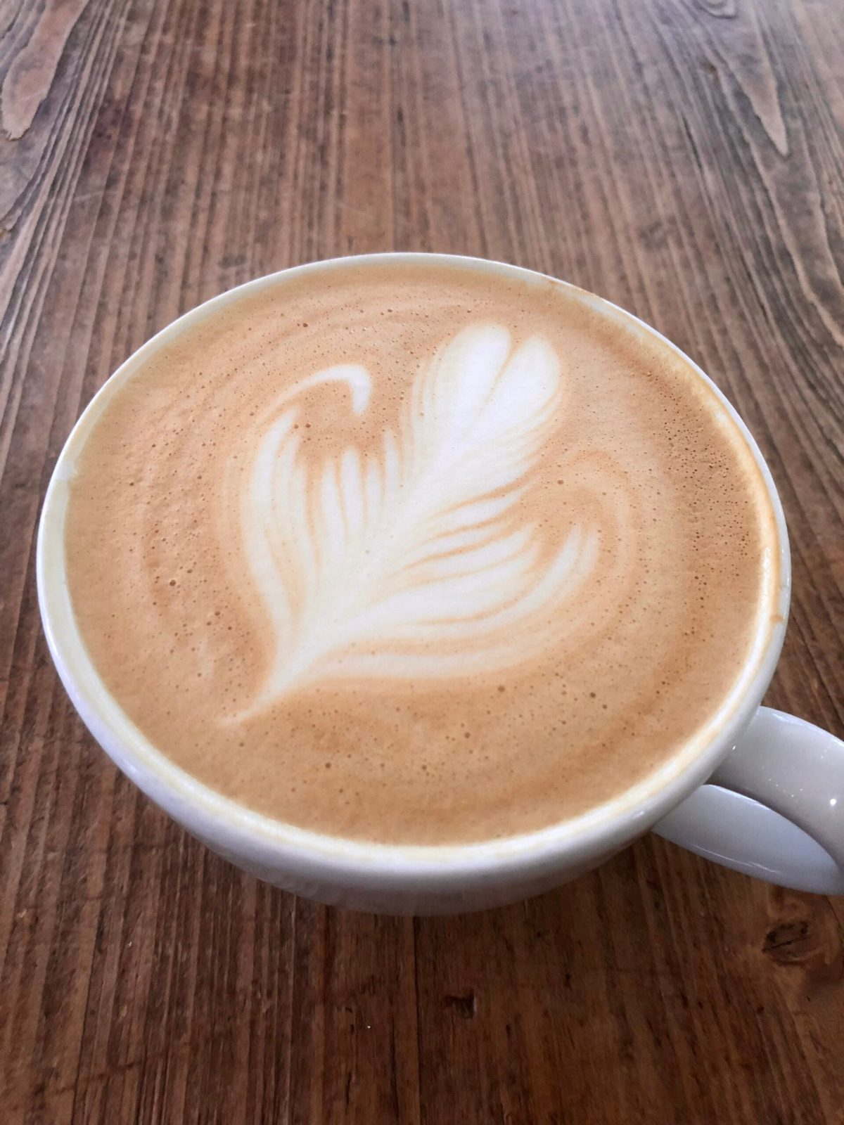 Frothy Monkey | Nashville, TN #nashvillecoffee #bestcoffeeinnashville #whattodoin12south #12southnashville #frothymonkeynashville #nashvillevacation