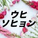 麗 ウヒ ソヒョン