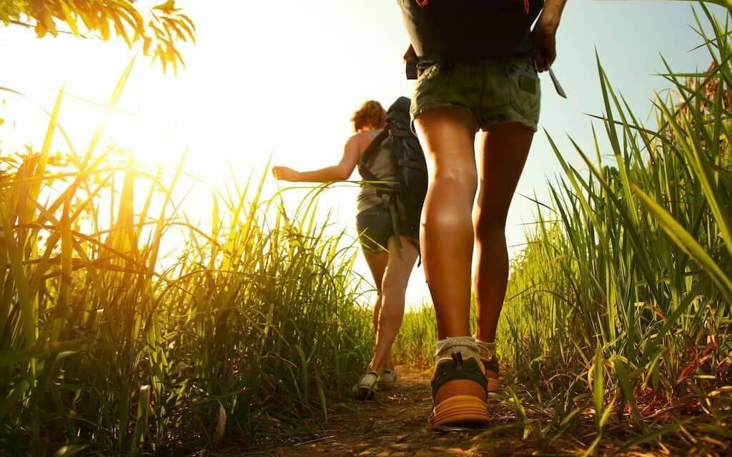 Lidé, kteří chodí na výlety do přírody, jsou psychicky silnější a chytřejší