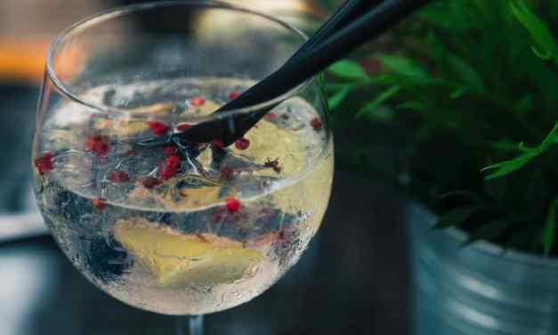 Gin tonic 5x jinak: připravte si úžasný osvěžující drink