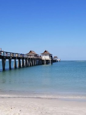 Top Things to Do in Naples Florida with Kids. Learn where to go & what to activities see while traveling with kids. Must see attractions like Naples amazing Beaches, restaurants, museums, parks and more for families. A great road trip vacation! #florida #travelwithkids #familytravel #traveltips #naplesfl