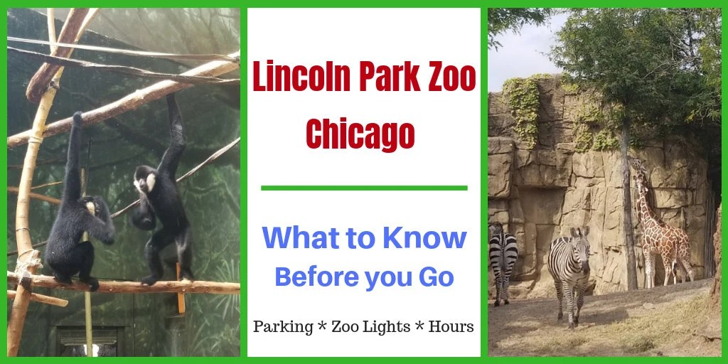 Zoo Lights Lincoln Park Hours