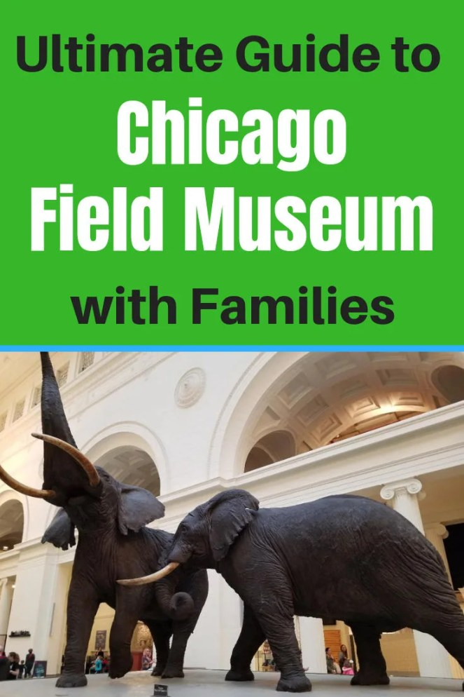 Best Things to do at the Chicago Field Museum of Natural History with kids. All the tips you need to know before you go with your family to this Illinois museum. #fieldmuseum, #chicagomuseum, #traveltips, #familyvacation
