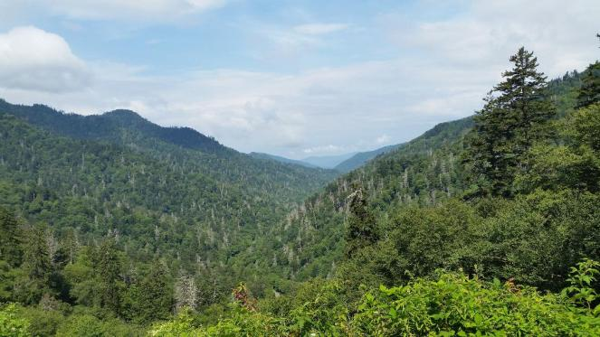 What you can't miss on your visit to the Great Smoky Mountains National Park. Where to take the best hikes, scenic drives and learn the history of the area. Find out where to stay on your visit too. Check out this complete guide to the Smoky Mountains. #nationalparks #smokymountains #familytravel #traveltips #thingstodo