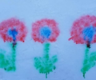 Use snow paint to create beautiful flower. A fun outdoor art project for kids.