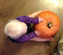 Baby and her pumpkin