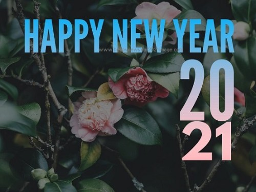Free New Year Images 2021