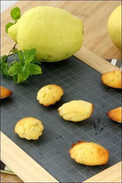 madeleine jus citron