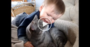 Baby Cuddling And Talking To His Best Friend a Gorgeous Kitty