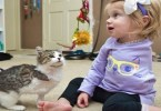 Girl With One Arm Adopts A 3-Legged-Kitten. They are meant for each other!
